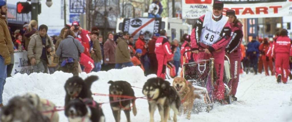 Iditarod Start Image